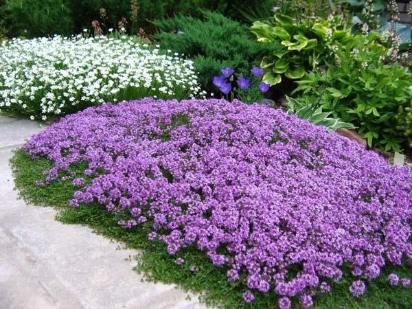 Украшаем в саду то, что нельзя украсить