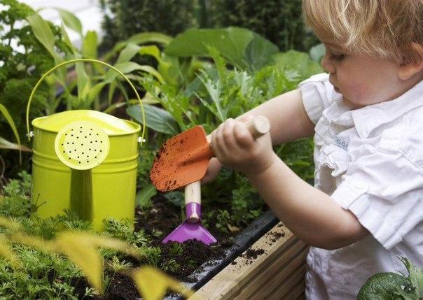 Как занять скучающего на даче ребёнка и вырастить из него заядлого огородника