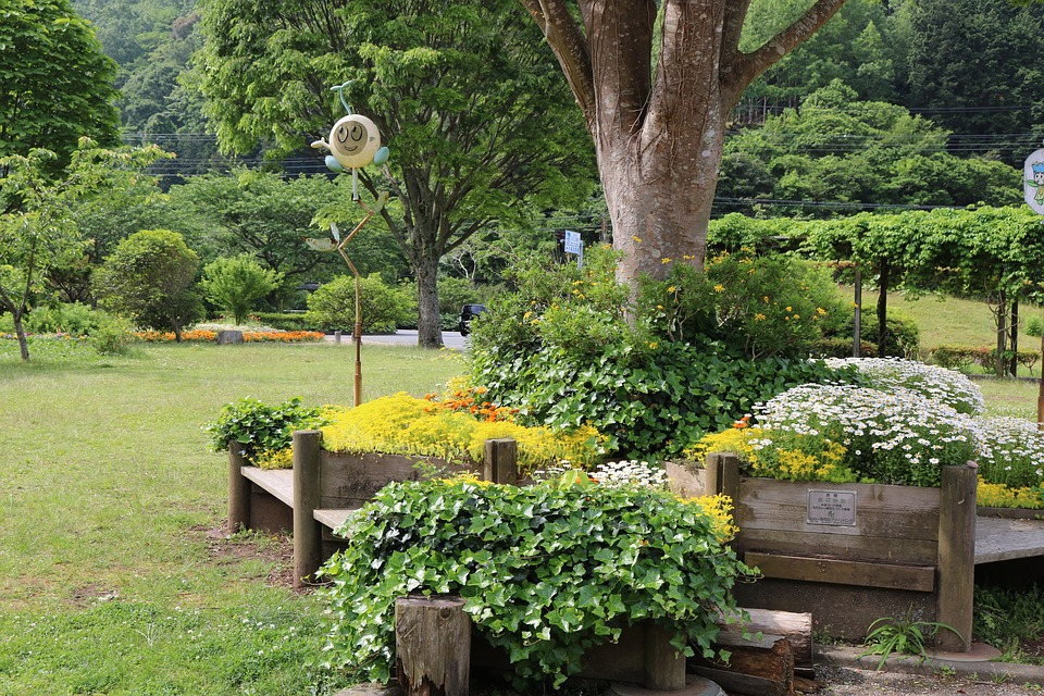 Уход за садом поздней весной и ранним летом. 14557.jpeg
