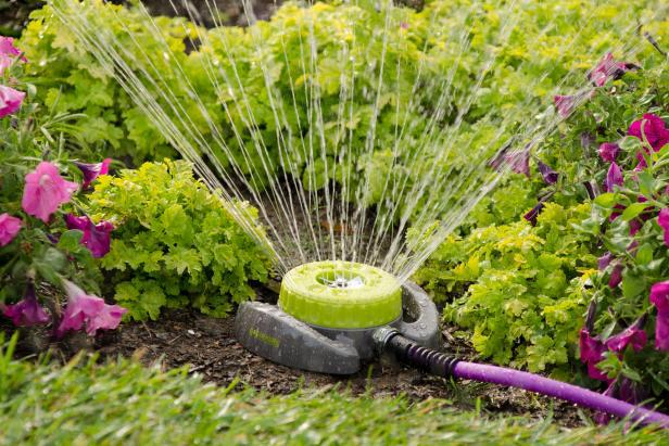 Как правильно поливать сад и огород. 14560.jpeg