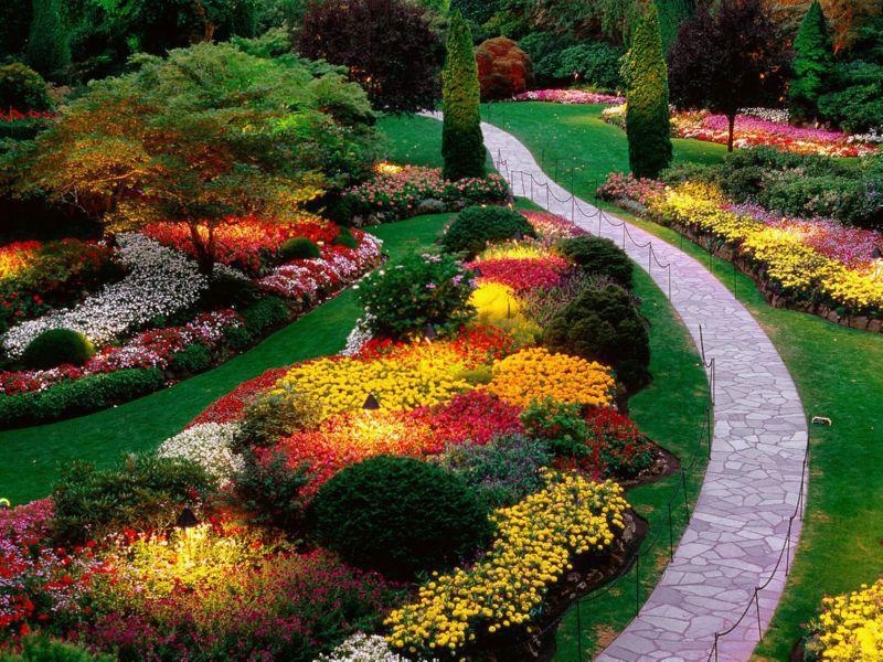 Садовые тренды этого и следующего лета. 14608.jpeg