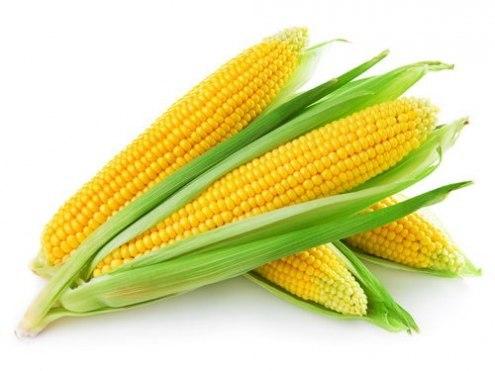 Вареная кукуруза: все секреты приготовления