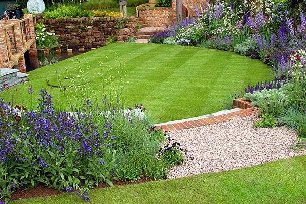 Газонная трава - какую выбрать?