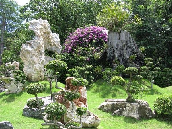Сад в японском стиле. Сад в японском стиле 7