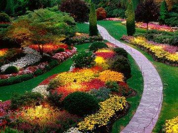 Садовые тренды этого и следующего лета