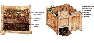 Лучшее удобрение получается в компостном ящике