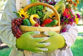 Семь садовых работ, которые важно провести в первом месяце осени, чтобы на следующий год был хороший урожай