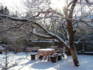 Десять основных работ на даче в зимний период