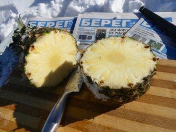 Повторяем опыт Воронежа: выращиваем ананас под снегом