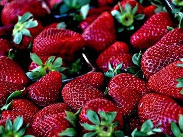 Лучшие виды подкормок для красной ягоды - клубники